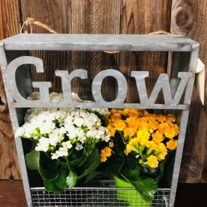 """Grow"" Hanging Decor"